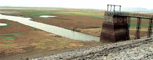 HIRAKUD RESERVOIR DRIED: No water for farming